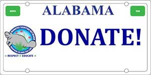 Support the manatees, reserve your specialized Alabama license plate