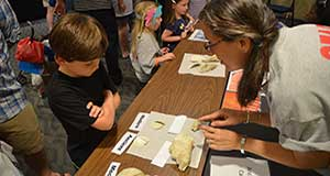 All ages invited to explore at Discovery Day on April 8
