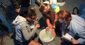 Register today for University Programs summer field courses