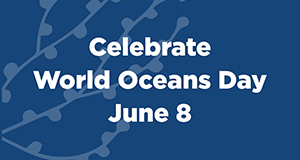 Join us June 8 to celebrate World Oceans Day